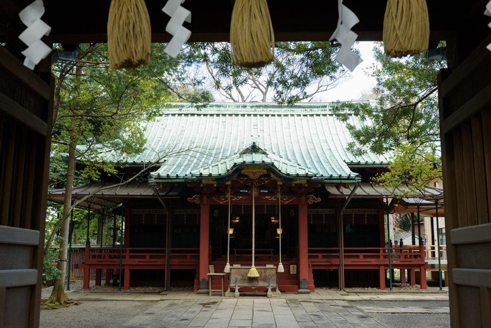 門越しの赤坂氷川神社の本殿